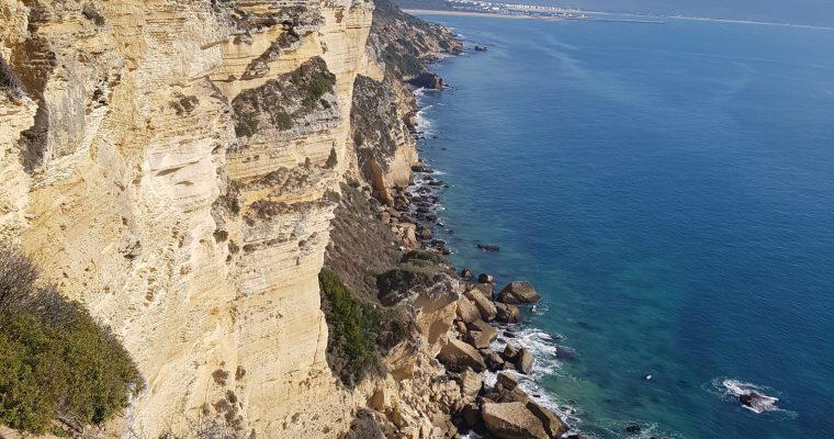 Veggie Walkers – un día maravilloso – la Playa de Hierbabuena