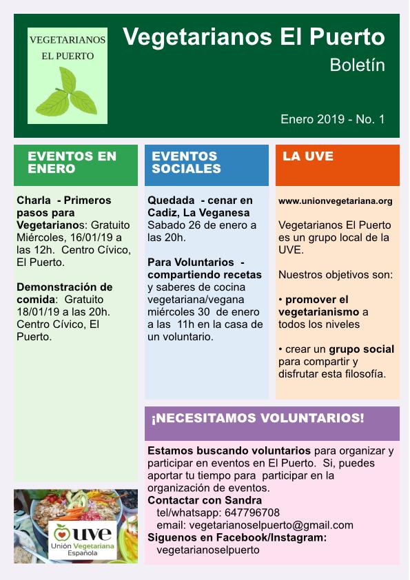 Bolitín Enero 2019